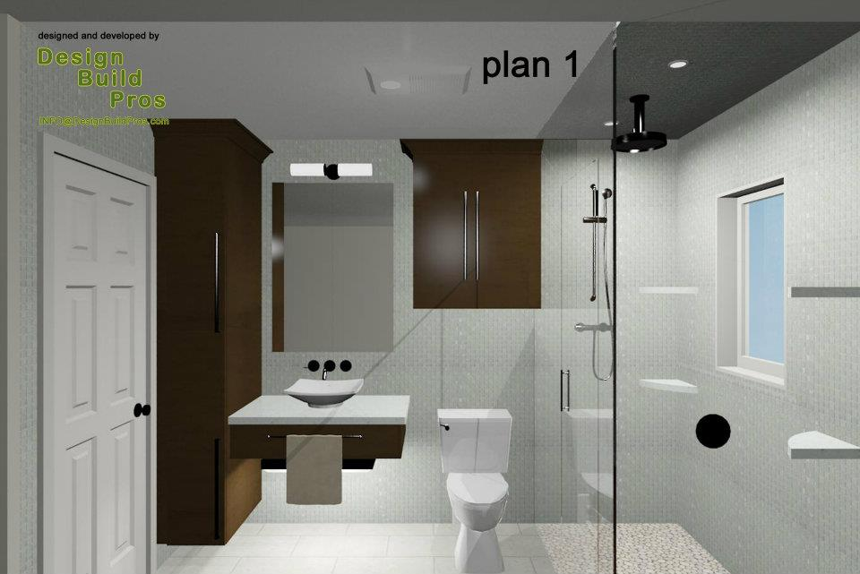 Contemporary Hall Bathroom Design Construction And