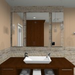 Master Bathroom Remodel (4)