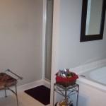 existing bathroom before remodel (1)