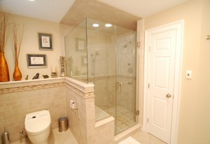 Selecting a Toilet for Your Bathroom Remodel (2)-Design Build Planners