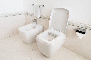 Toilet and bidet in a modern bathroom - raised lid