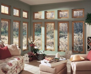 Low-E glass for energy efficient windows - Design Build Planners