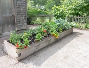 Raised Bed Garden - Organic Garden Gurlz