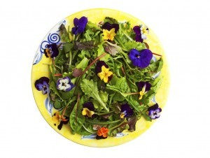 Edible Flower Recipe from Organic Gurlz Gardens Fort Wayne Indiana