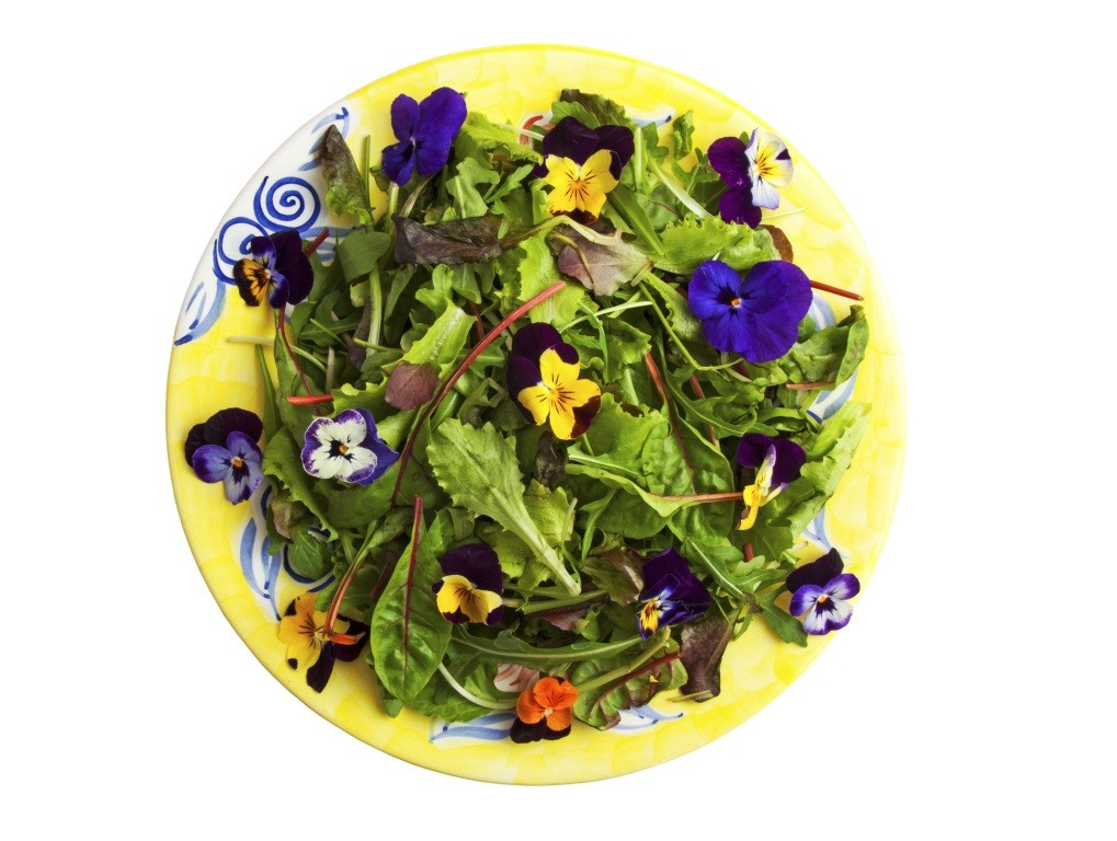 Recipe For Edible Flowers Design Build Planners