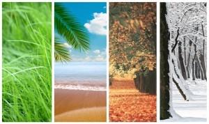 Changing seasons and your health ~ Organic Gurlz Gardens Fort Wayne Indiana